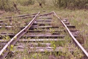 Stillgelegte Bahnstrecke in einem Hochmoor in Bayern