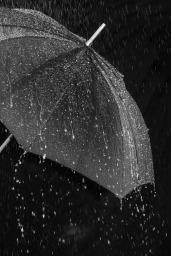 rain-3524806_1920 (2) Bruno Glätsch