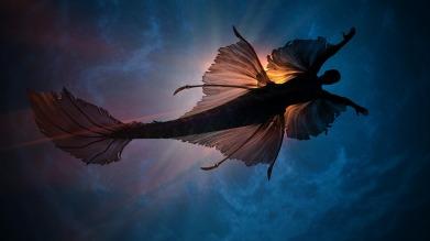 mermaid-4761358_1920 (2)Sergei Tomakov
